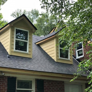 Goose Island Roofing, White House Roofing, Construction